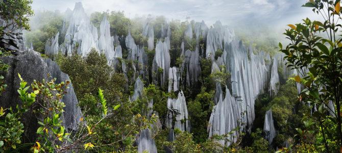 En unik och givande resa till Borneo